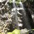 Picture of Grotto Falls Trail